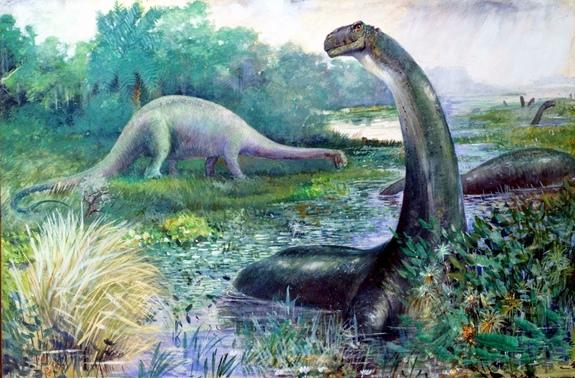 In this historic reconstruction, Brontosaurus is shown as a semi-aquatic animal, while Diplodocus roams the land.