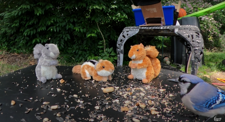 Stuffed squirrels stand on top of the last step of a Rude Goldberg machine after being showered with nuts and seeds.