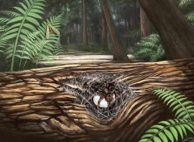 Ecological reconstruction of a female lagonomegopid spider guarding her egg sac.