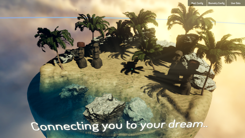 View of the virtual island