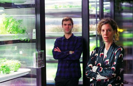 Erez Galonska and Osnat Michaeli, founders of the urban farming start-up Infarm, pose for a picture beside indoor growing systems at the company's showroom in Berlin, Germany, February 5, 2018. REUTERS/Hannibal Hanschke