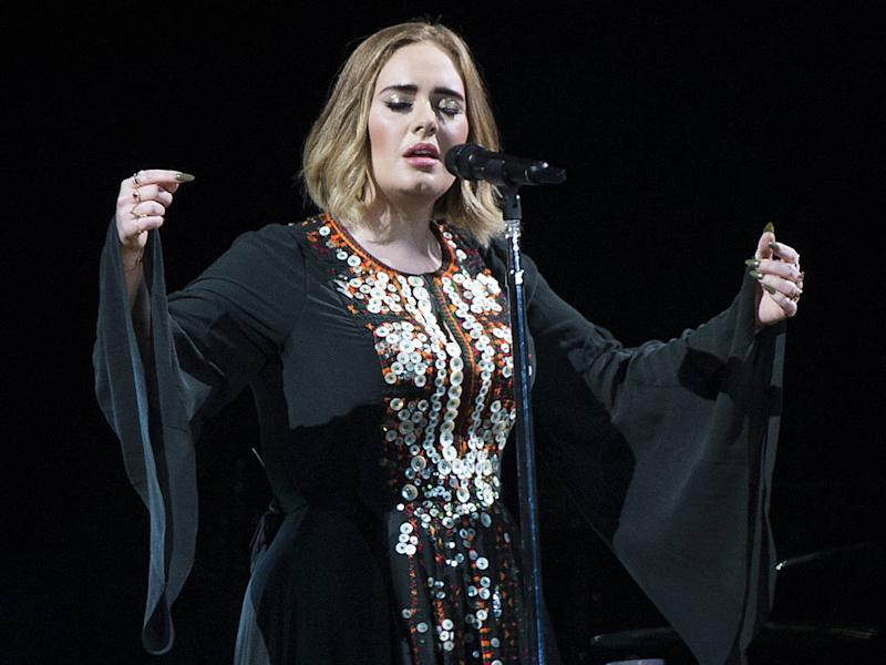 Adele halts show to scold security guard