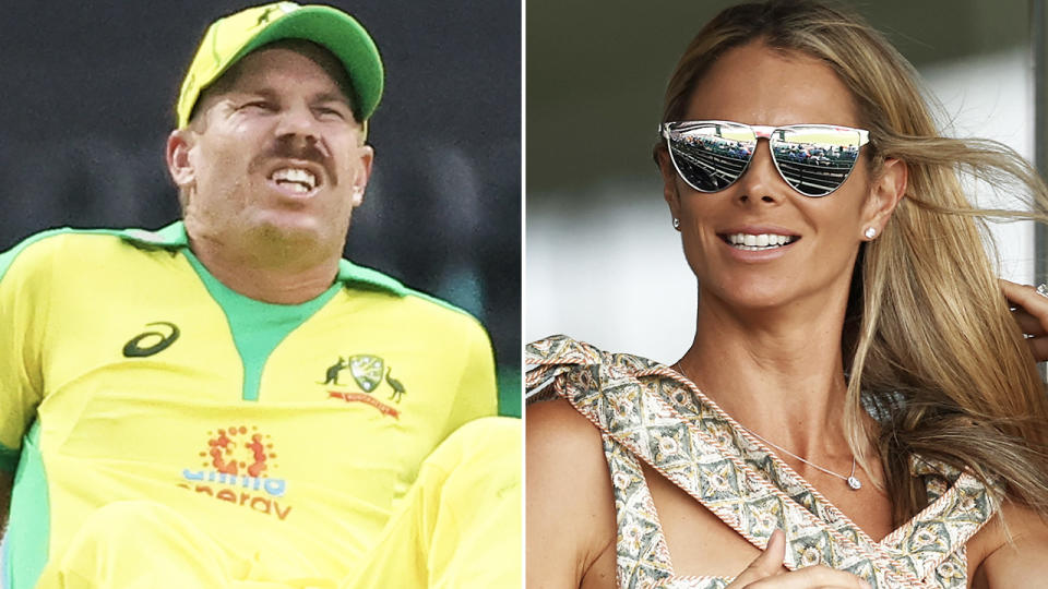 David and Candice Warner, pictured here at the SCG during the second ODI against India.