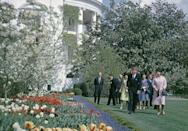 """<p>At the end of every year, a butler carted all the broken china to Hains Point and threw it into the <a href=""""https://www.amazon.com/Upstairs-White-House-First-Ladies/dp/1504038673?tag=syn-yahoo-20&ascsubtag=%5Bartid%7C10063.g.34658622%5Bsrc%7Cyahoo-us"""" rel=""""nofollow noopener"""" target=""""_blank"""" data-ylk=""""slk:Potomac River"""" class=""""link rapid-noclick-resp"""">Potomac River</a>. </p>"""