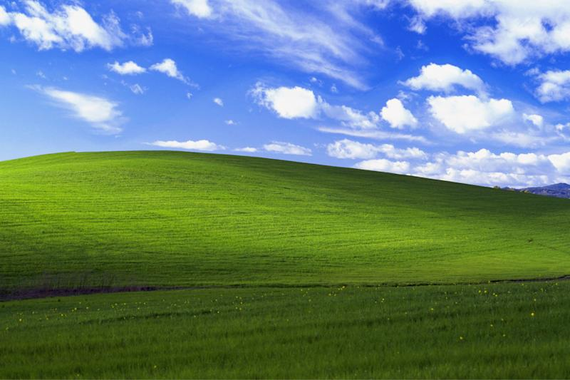 Famous photo: Bliss, by Charles O'Rear, became the default desktop for Windows XP: Charles O'Rear/Microsoft