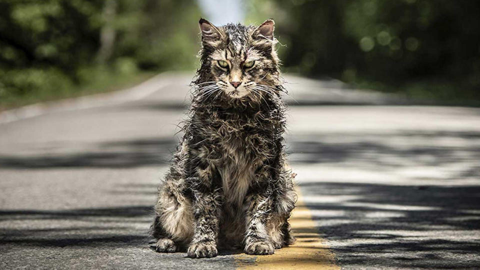 It might not be the most ballyhooed of the year's Stephen King adaptations, but this reimagining of one of the horror maestro's darkest novels is a bleak, morbid treat. Jason Clarke excels in the lead role, with ample support provided by a cat so creepy even the internet would struggle to find him cute. (Credit: Paramount)