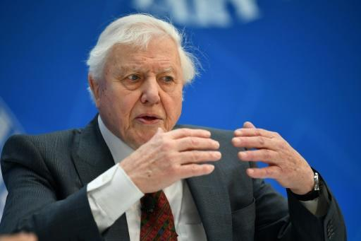 Broadcaster and natural historian David Attenborough was given an award by Queen Elizabeth II for highlighting pollution