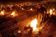 Chablis winemakers light up candles, heaters to save vines from frost