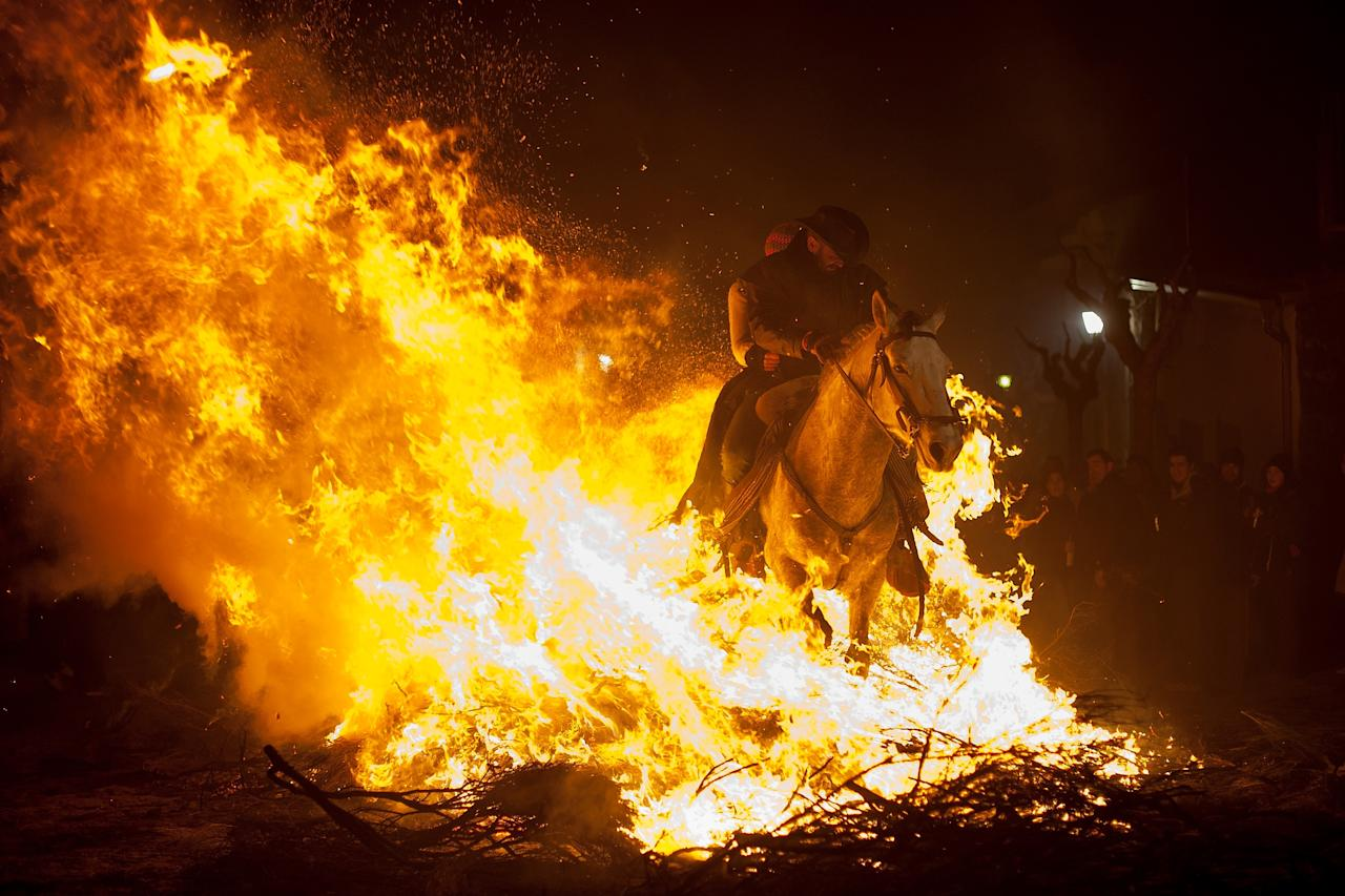 SAN BARTOLOME DE PINARES, SPAIN - JANUARY 16:  A man rides a horse through a bonfire on January 16, 2013 in San Bartolome de Pinares, Spain. In honor of San Anton, the patron saint of animals, horses are riden through the bonfires on the night before the official day of honoring animals in Spain.  (Photo by Pablo Blazquez Dominguez/Getty Images)