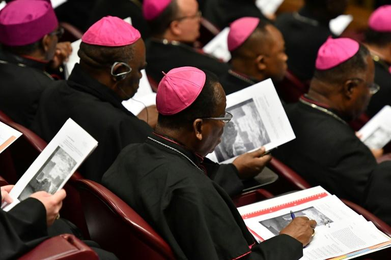 Last month a Vatican meeting addressed the issue of sex abuse within the Catholic church