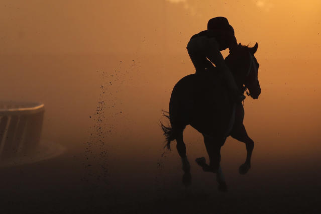 An exercise rider gallops a thoroughbred around the track during a workout at Belmont Park, Tuesday, June 5, 2018, in Elmont, N.Y. Justify will attempt to become the 13th Triple Crown winner when he runs in the 150th running of the Belmont Stakes horse race on Saturday. (AP)