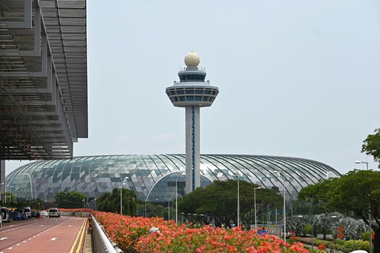 A baggage handler at Singapore's Changi Airport has been jailed after switching the tags on hundreds of pieces of luggage, sending them to wrong destinations around the world
