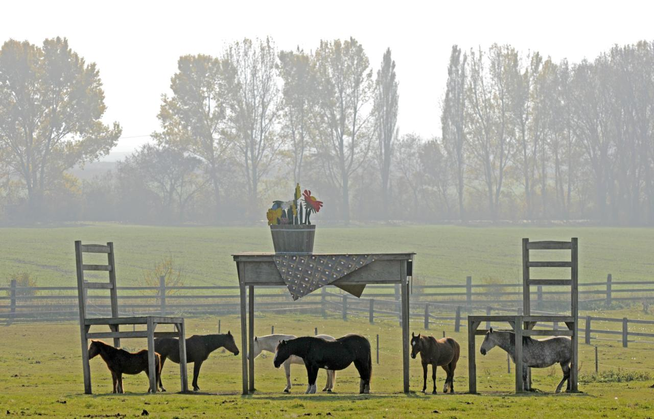 Horses stand in the shadows of a gigantic wooden table and two chairs during nice autumnal weather at a meadow near Doellstaedt, central Germany, Tuesday, Nov. 1, 2011. (AP Photo/Jens Meyer)