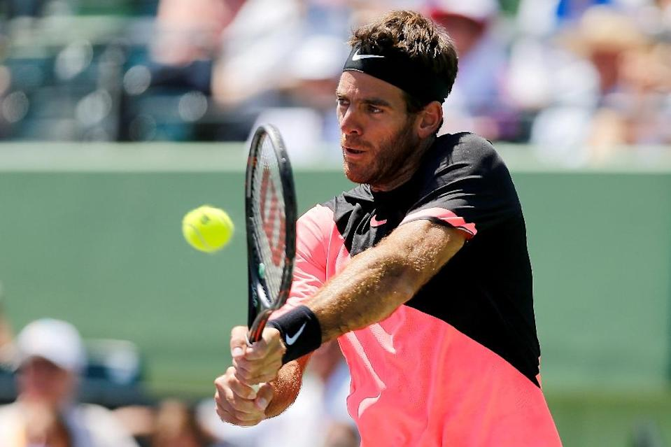 Juan Martin del Potro of Argentina, in devastating form and the crowd favorite, lost to a phenomenal effort from Isner (AFP Photo/Michael Reaves)