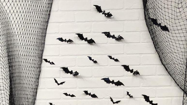 Bat Wall How To Recreate The Instagram