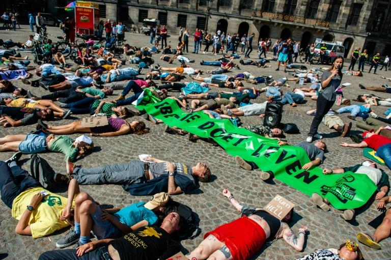 """Demonstrators around the world, including these in the Netherlands staging a """"die-in,"""" called on Brazil to act to protect the Amazon rainforest (AFP Photo/Romy Fernandez)"""