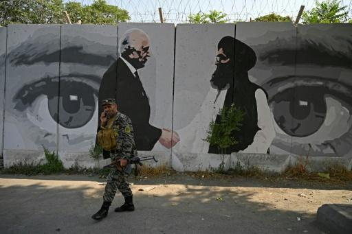 A mural depicts US special envoy Zalmay Khalilzad (L) and Taliban co-founder Mullah Abdul Ghani Baradar. Under the US-Taliban deal, 'intra-Afghan' talks were to start in March but hit delays amid political infighting in Kabul