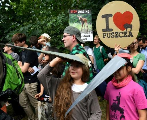 Green activists, rangers face off over Poland's ancient forest