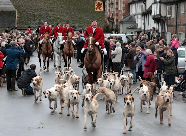 "LACOCK, UNITED KINGDOM - DECEMBER 26: Jonathon Seed, Joint Master and Huntsman with the Avon Vale Hunt, leads the hounds and fellow riders for their traditional Boxing Day hunt, on December 26, 2011 in Lacock, England. As hundreds of hunts gather today for their traditional Boxing Day meets Agriculture Minister Jim Paice has said the Hunting Act ""simply doesn't work"" and added that there should be a vote on whether to repeal the act when there was ""time in the parliamentary calendar"". (Photo by Matt Cardy/Getty Images)"