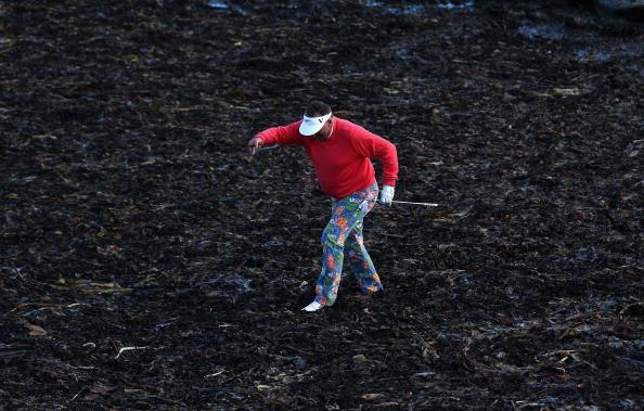 KINGSBARNS, SCOTLAND - OCTOBER 06:  Former cricketer Sir Ian Botham walks in the kelp to play his second shot on the 15th hole from the rocks during the third round of The Alfred Dunhill Links Championship at Kingsbarns Golf Links on October 6, 2012 in Kingsbarns, Scotland.  (Photo by Warren Little/Getty Images)