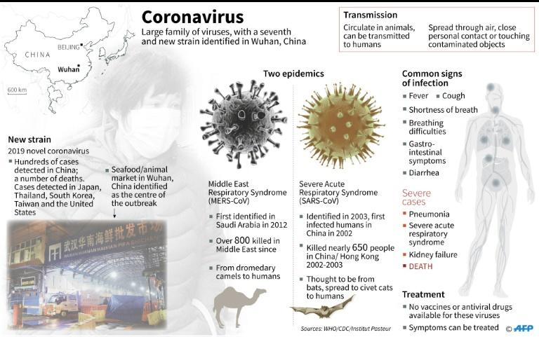 Factfile on the coronavirus family, which circulate in animals and can be transmitted to humans. A new strain of this virus has been identified in Wuhan, China. (AFP Photo/Gal ROMA)