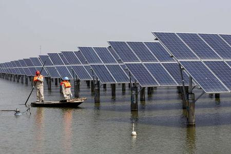 Employees row a boat as they examine solar panel boards at a pond in Lianyungang, Jiangsu Province, China, in this March 16, 2016 file photo. REUTERS/Stringer/Files