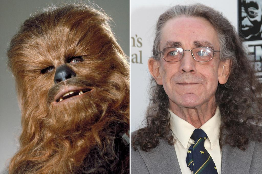 "Peter Mayhew – Chewbacca<br><br>While working as a hospital orderly in London, the 7-foot-3 Mayhew was spotted by a producer who cast him in ""Sinbad & the Eye of the Tiger"" (1977). When Mayhew attended a casting call for ""Star Wars,"" he got the job the moment he stood up to shake Lucas's hand. Mayhew was actually offered both the part of Darth Vader and the 200-year-old Wookie, Chewbacca (Lucas got the idea for a gentle, hairy, non-English-speaking co-pilot when he saw his dog, an Alaskan malamute, sitting in the passenger seat of a car). Mayhew chose the latter because he wanted to play a hero. He's been playing that hero, in four of the six films and on the convention circuit, ever since."
