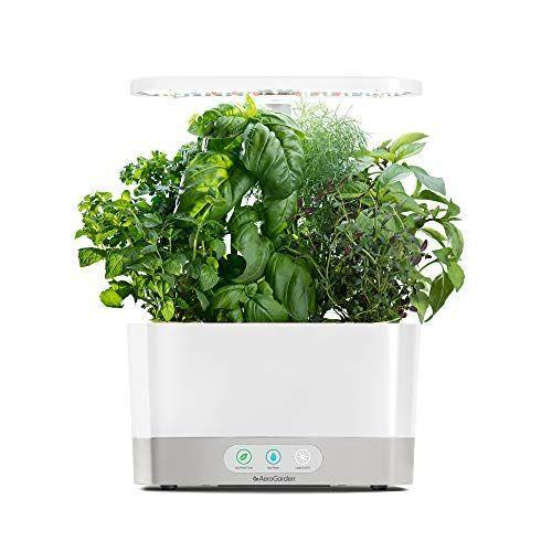 """<p><strong>AeroGarden</strong></p><p>amazon.com</p><p><strong>$99.97</strong></p><p><a href=""""https://www.amazon.com/dp/B07CKNWHPQ?tag=syn-yahoo-20&ascsubtag=%5Bartid%7C2141.g.37374115%5Bsrc%7Cyahoo-us"""" rel=""""nofollow noopener"""" target=""""_blank"""" data-ylk=""""slk:Shop Now"""" class=""""link rapid-noclick-resp"""">Shop Now</a></p><p>Yes, you can be a person who grows fresh herbs indoors. The AeroGarden Harvest is small enough to fit anywhere, and it produces lush herbs through the power of hydroponics and LED grow lights. The lights turn on and off automatically, and you get alerts to add food.</p>"""