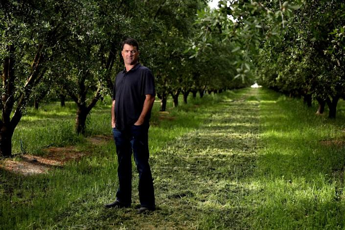 Dino Giacomazzi stands in an almond tree field.