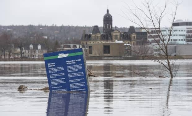Officials with New Brunswick's River Watch program said the flood forecast for the next few days shows water levels dropping.  (Stephen MacGillivray/Canadian Press - image credit)