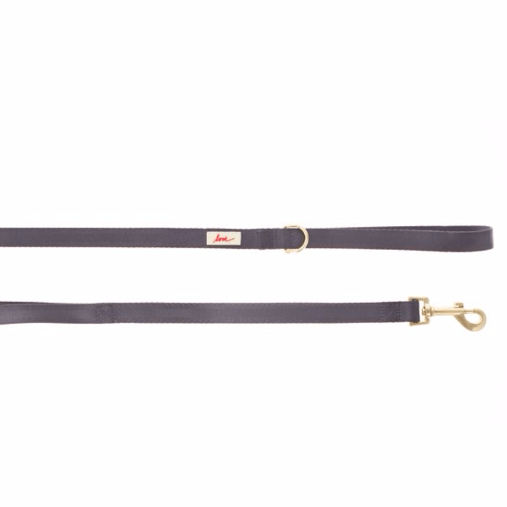Walk your dog in style with this leash. (PetSmart, $15.99)