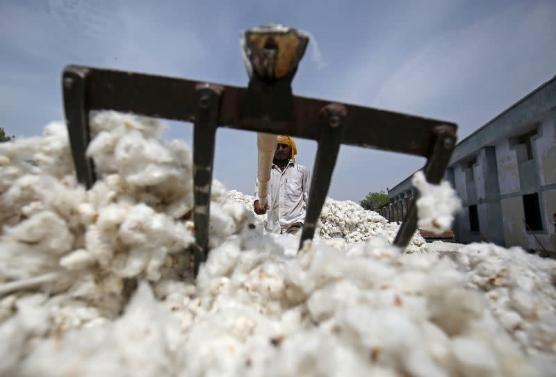 Indian growers to pile more pressure on downtrodden cotton market
