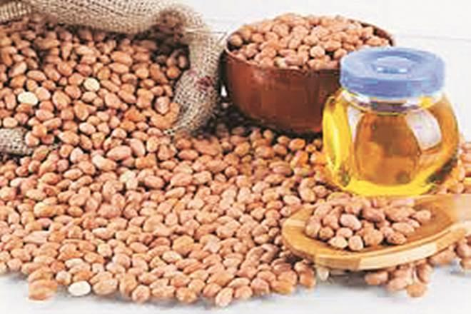 groundnut Price , cottonseed oil, Gujarat , refined palm oil, palm oil, Market news, groundnut