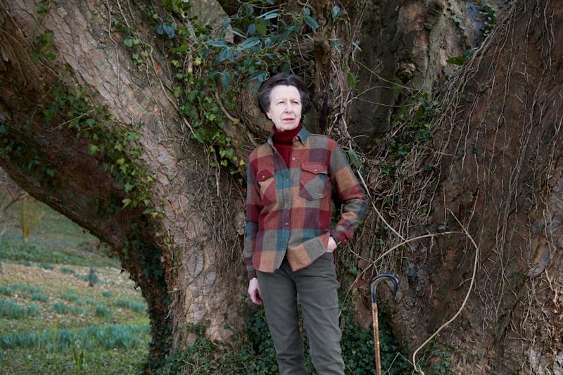 The official photos of Anne were taken at her home in February (Camera Press via Getty Images)