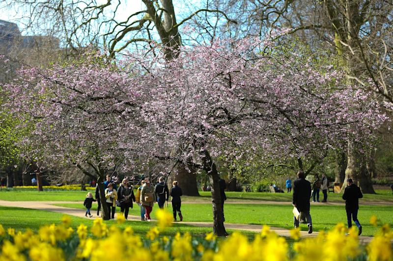 Warm spell: Londoners enjoy the weather in St James's Park: Rex Features