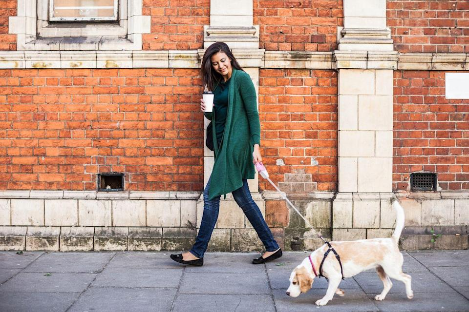 """<p>This extra time allows you to give your pet lots of exercise before you leave your home. """"Try a longer walk or even a short jog, or any other <a href=""""https://www.womansday.com/life/pet-care/g32085722/indoor-dog-activities/"""" rel=""""nofollow noopener"""" target=""""_blank"""" data-ylk=""""slk:activity that could burn lots of energy"""" class=""""link rapid-noclick-resp"""">activity that could burn lots of energy</a>,"""" Dr. J.J. Rawlinson, DVM, a veterinarian at Wallis Annenberg PetSpace, tells Woman's Day. """"If they spend that energy with you, they're less likely to use it in destructive ways when you're away."""" <br></p>"""