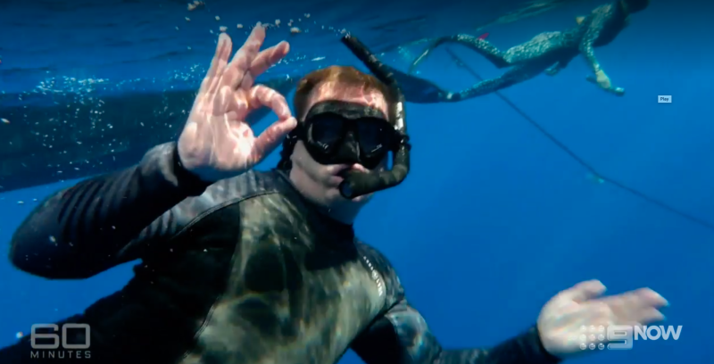 Karl Stefanovic gives the ok symbol while diving underwater with sharks