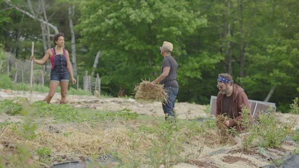PHOTO: Soul Fire Farm is an Afro-Indigenous-centered community farm committed to uprooting racism and seeding sovereignty in the food system, its website says.  (ABC News )