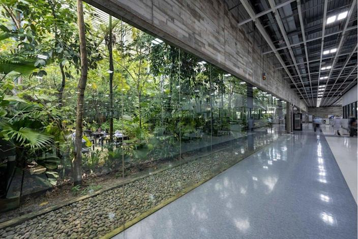 A large garden space is visible from almost every point inside the Factory in the Forest.
