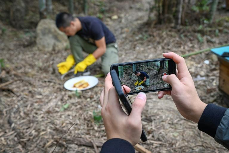 Douyin, the Chinese version of popular video sharing app TikTok that has 400 million users in the country and has turned beekeeper Ma Gongzuo into something of a celebrity
