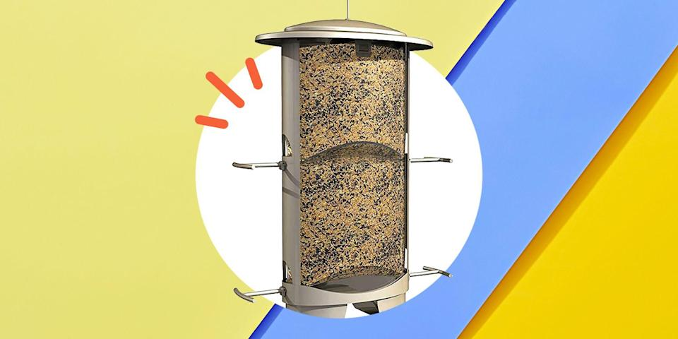 <p>You don't have to own a pet bird to enjoy the company of those feathered beauties. A bird feeder is an easy way to invite them into your home, or more specifically your backyard, without taking on the full-time responsibility of caring for one. </p><p>The best bird feeders will bring all kinds of visitors to your garden, from songbirds like cardinals to goldfinches making their feeding rounds, and they're fairly low-maintenance too. Just keep the birdseed supply full and regularly clean your bird feeder if the directions call for it. The type of bird seeds you add to the feeder can determine what kind of birds you'll attract. </p><p>To really make the most of your bird-watching sessions, make sure you place your bird feeder in a place with lots of sunlight that's clearly visible from a window in your home. That'll make it easy to take in their sights and sounds as you go about your day or have your morning coffee. </p><p>If you're looking for fairly inexpensive buys that'll have birds flocking to your yard, here's a list of the best bird feeders of 2020.</p>