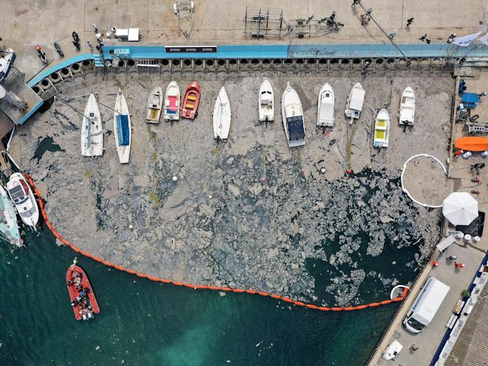 Barrier surrounds 'sea snot' as part of clean-up operation (Reuters)