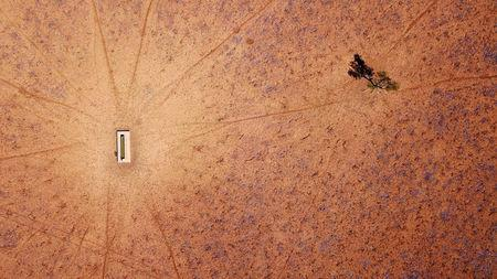 A lone tree stands near a water trough in a drought-effected paddock on Jimmie and May McKeown's property located on the outskirts of town of Walgett, in New South Wales, Australia, July 20, 2018. REUTERS/David Gray