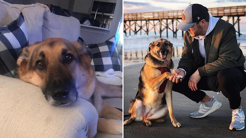 US man Austin Conway's (right with his dog on the beach) touching Facebook post about his dog, Stella (left), has gone viral.