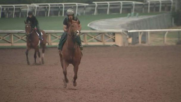 PHOTO: Horses continue to die at Santa Anita track in Arcadia, Calif. (KABC )