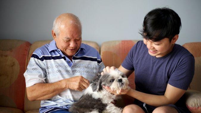 A father and son enjoying brushing dog hair and pet dog bonding session at their home.