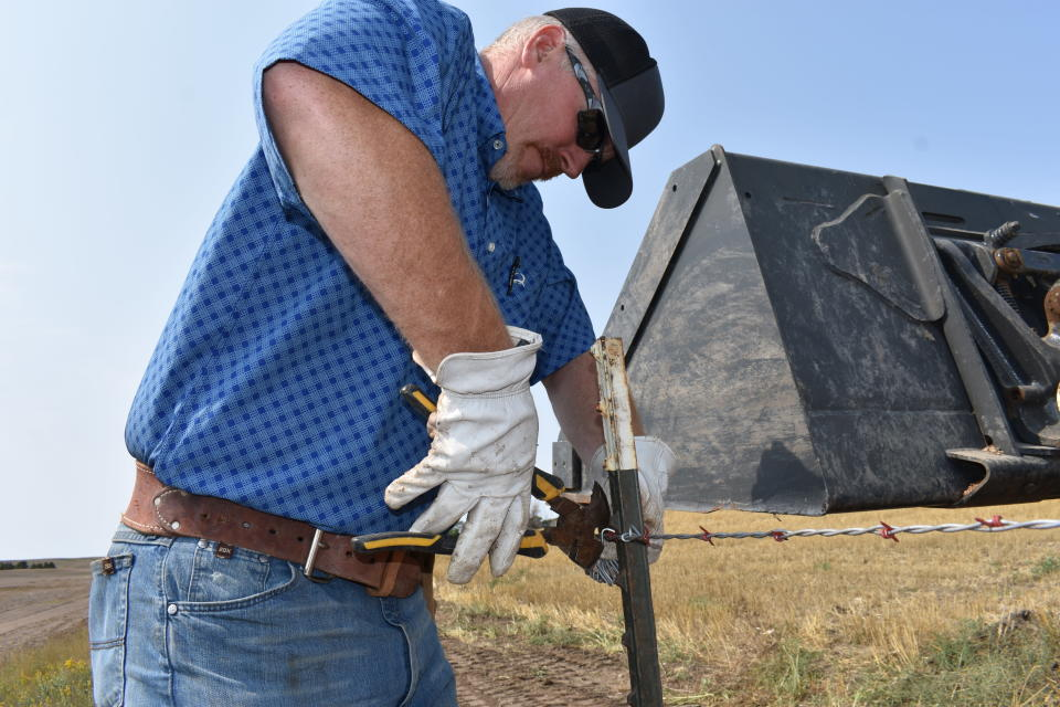 """Howdy Lawlar repairs a barbed wire fence on his farm, Aug. 25, 2021, in McKenzie County, N.D. Lawlar says a rush of newcomers who more than doubled the county's population over the past decade have become part of McKenzie's """"extended family."""" (AP Photo/Matthew Brown)"""