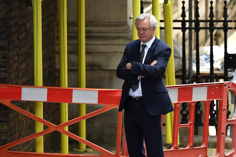 David Davis hinted at the police (Getty Images)