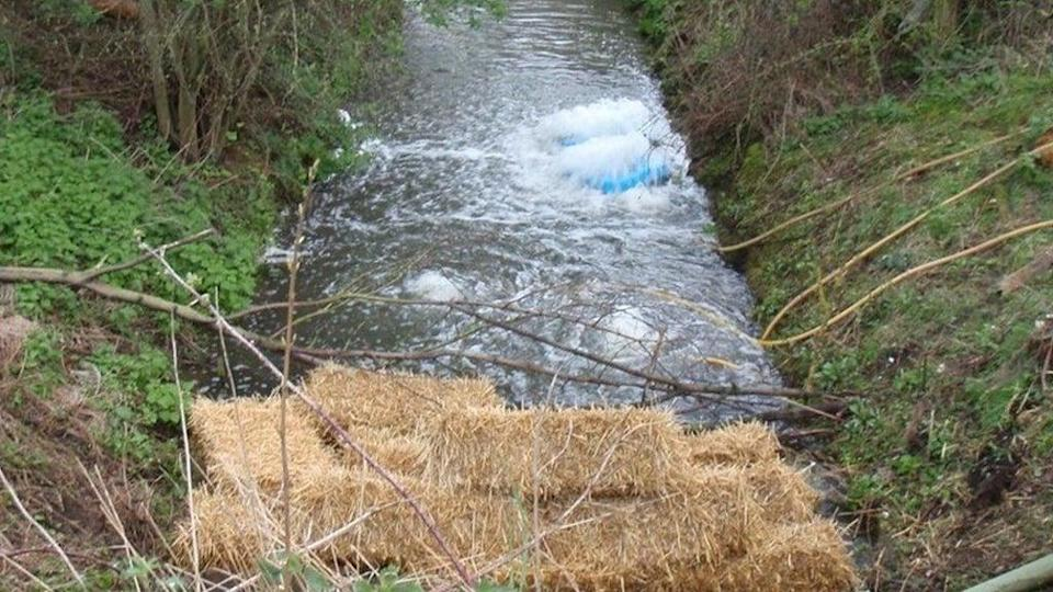 Hay bales being used at Potteric Carr after sewage leak (Environment Agency)