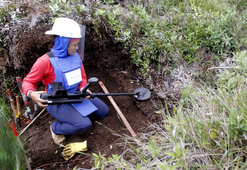 FILE PHOTO: Aleida Toro works with her mine detector in a zone where landmines were planted by rebel groups near Sonson in Antioquia province